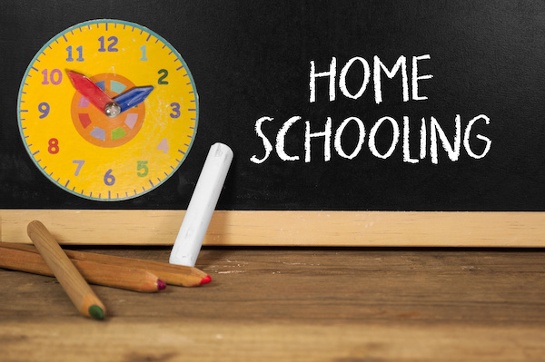 The best homeschooling websites for parents