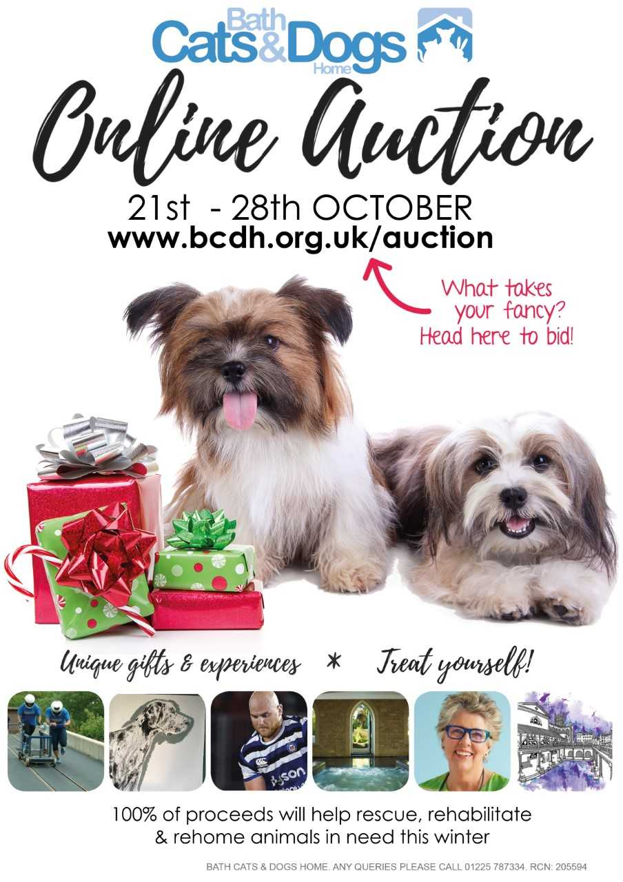 BCDH Online Auction